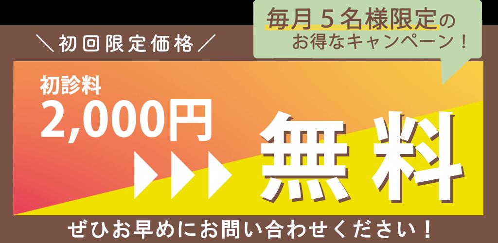 PC用キャンペーンバナー